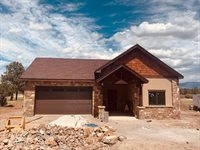 496 Badger Trail S, Ridgway, CO 81432