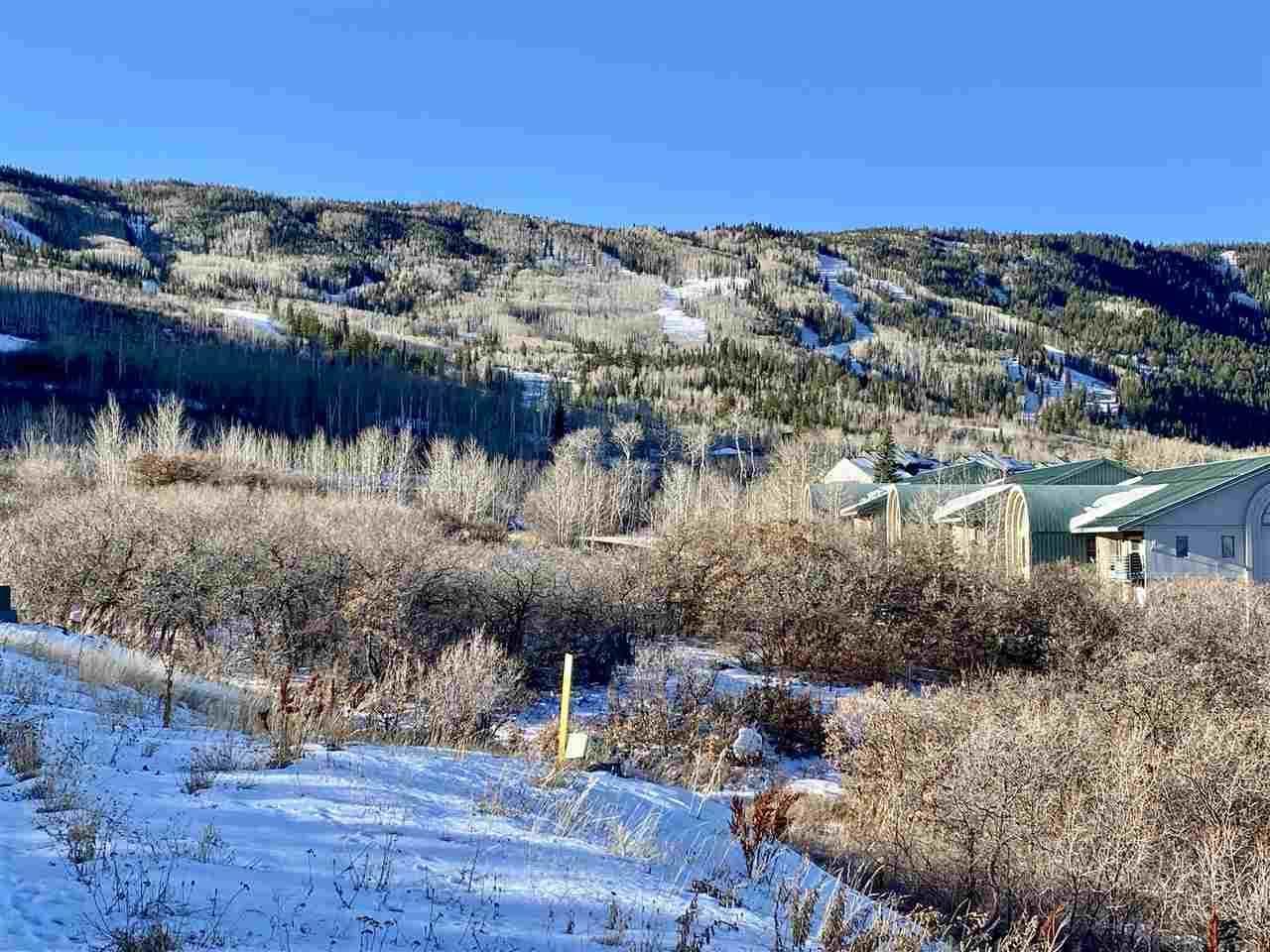 413 Coyote Run, Mesa, CO 81643