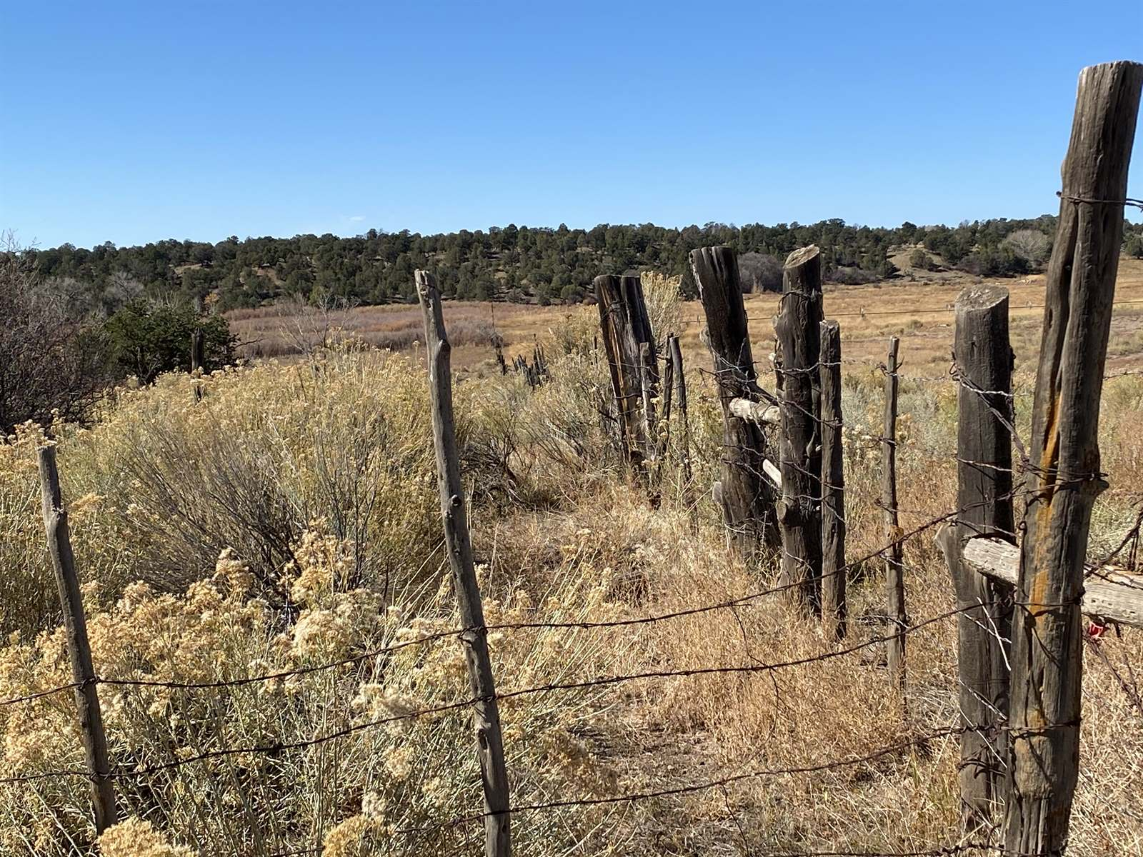x County Road 988, Arboles, CO 81121
