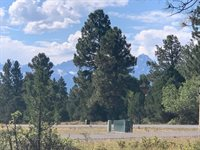 Badger Trail, lot 538, Ridgway, CO 81432
