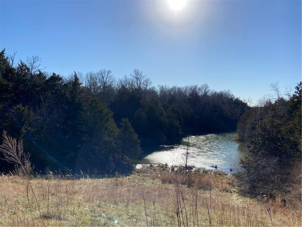 County Road 10487, Hume, MO 64752