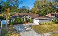 18410 Swan Lake Drive, Lutz, FL 33549