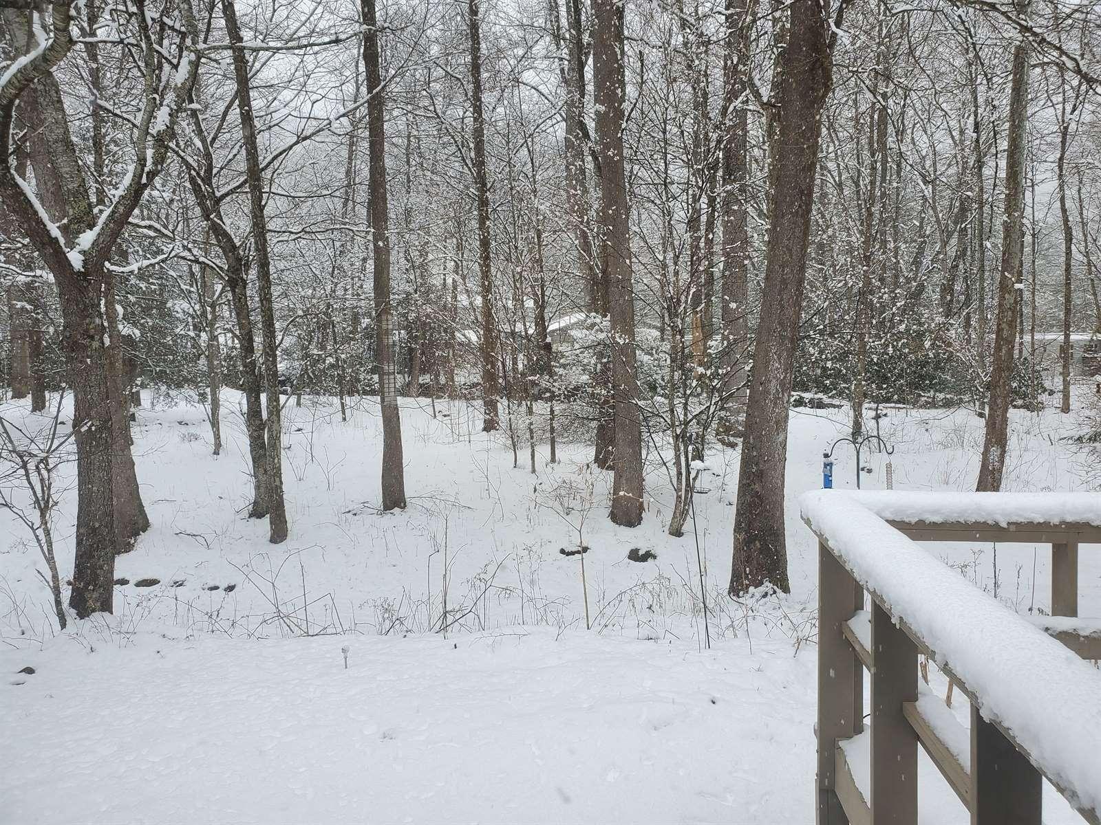 304 Covered Bridge Lane, Banner Elk, NC 28604