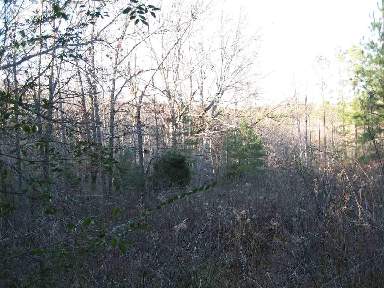0 Pritchard Rd, Russellville, AL 35653