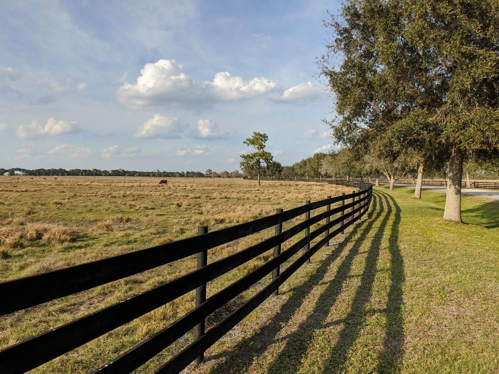 25701 SW Brians Trail, Okeechobee, FL 34974