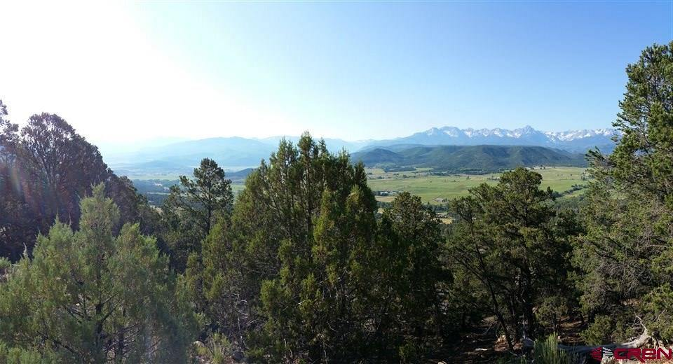 tbd County Road 1, Ridgway, CO 81432