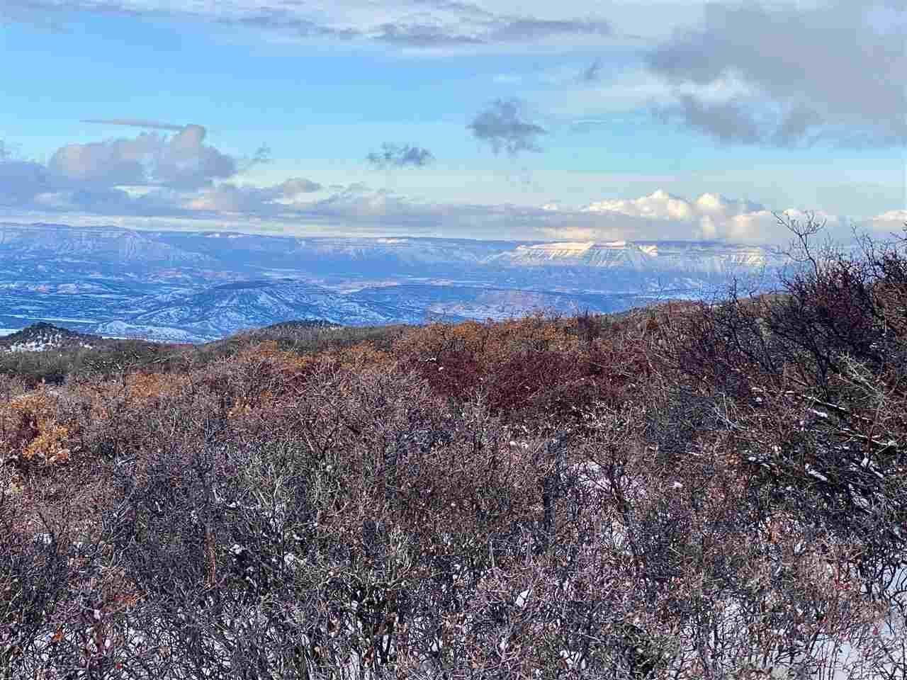 TBD Old Grand Mesa Road, Mesa, CO 81643