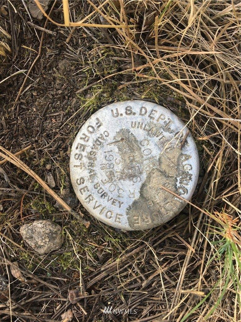 1770 Lyman Lake Moses Meadow Road, Tonasket, WA 98855