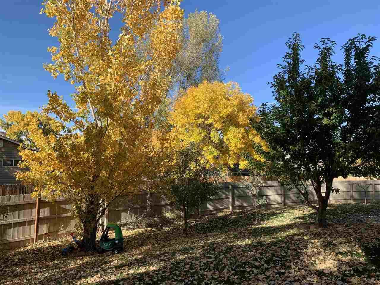 525 Rado Drive, Grand Junction, CO 81507