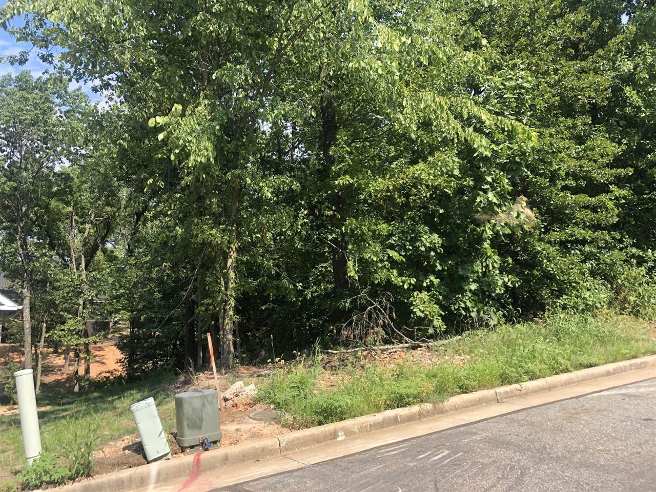 TBD Scenic Avenue Lot, #11, Joplin, MO 64804