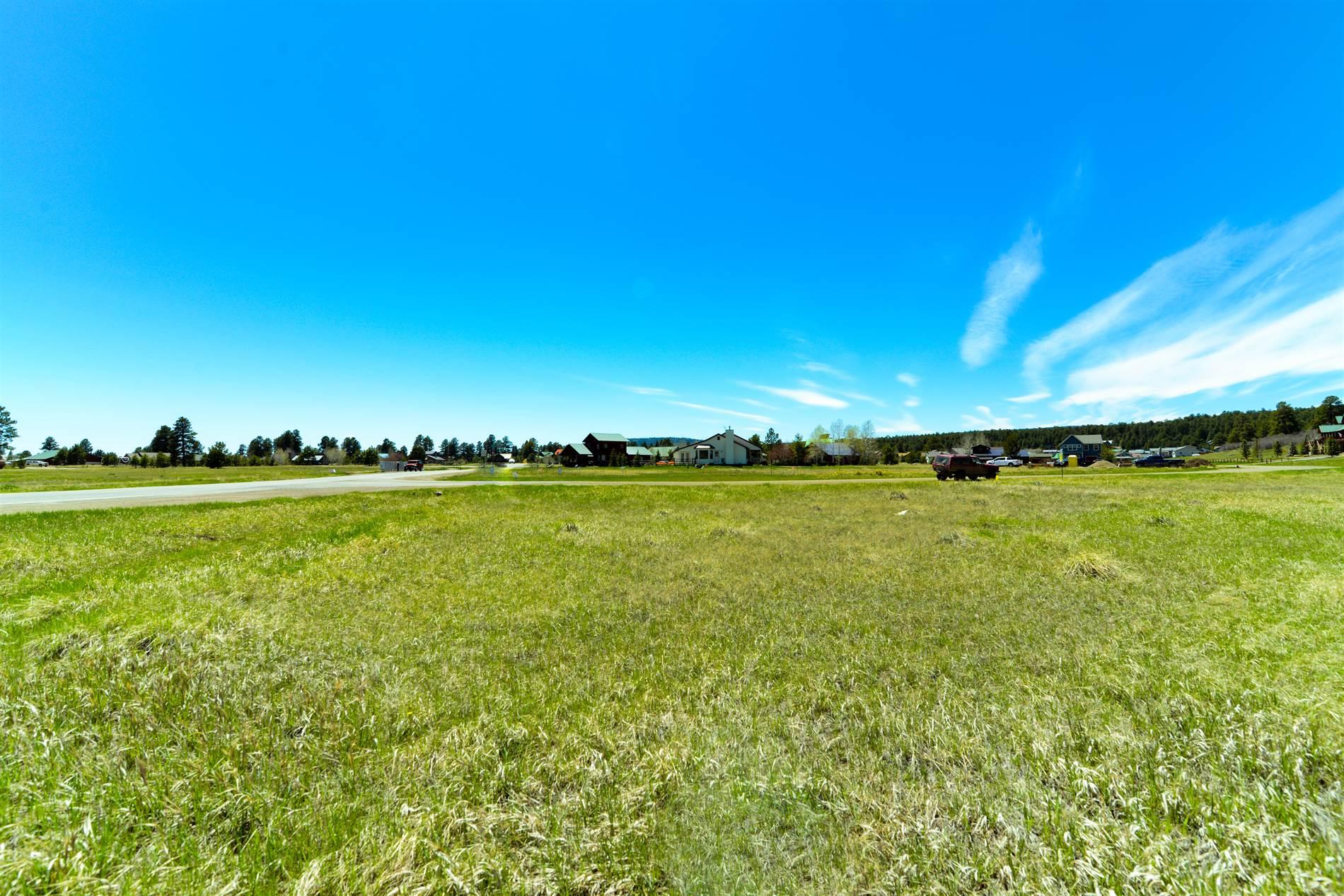 7302 N Pagosa Blvd., Pagosa Springs, CO 81147