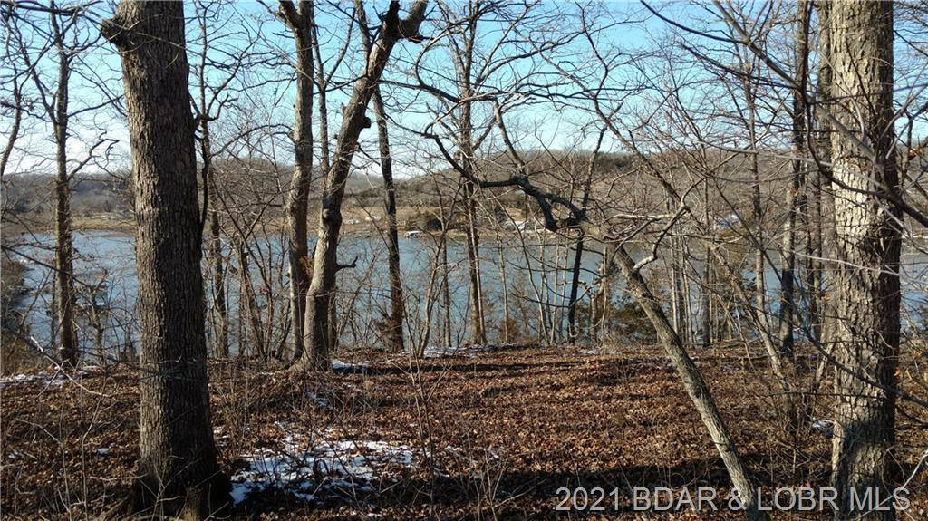 Lot 24 Jumping Bass Cove Jumping Bass Road, Roach, MO 65787