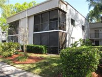 2375 Fox Chase Boulevard, #257, Palm Harbor, FL 34683