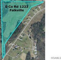 00 CO RD 1223, Falkville, AL 35622