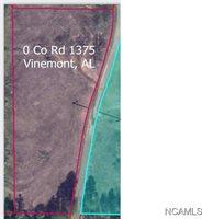 0 CO RD 1375, Vinemont, AL 35179