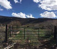 53027 Bull Basin, Mesa, CO 81643