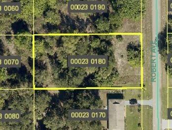 1311 Robert Avenue, Lehigh Acres, FL 33972