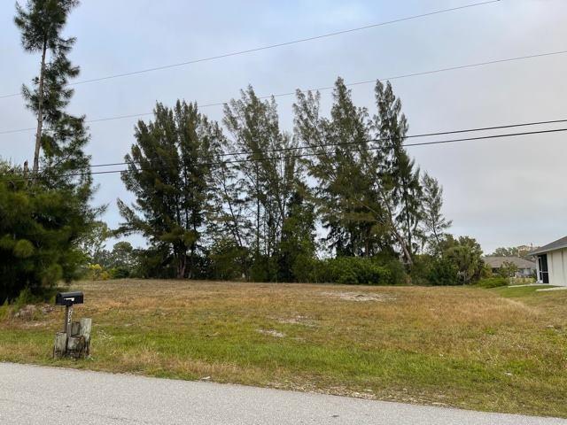 205 SW 21st Street, Cape Coral, FL 33991