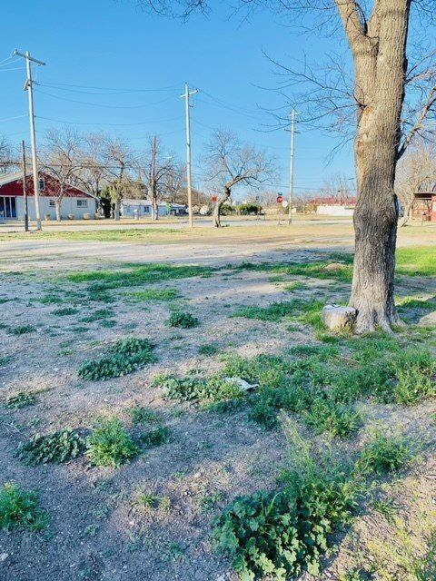 1002 South Crockett Ave, Sonora, TX 76950