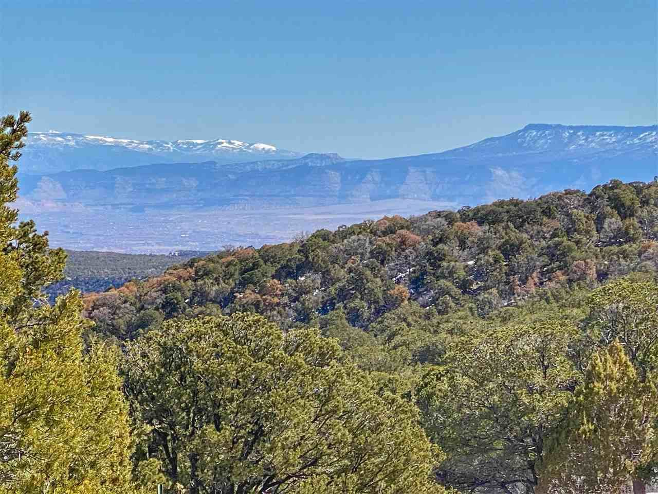 TBD 21 1/2 Road, Glade Park, CO 81523
