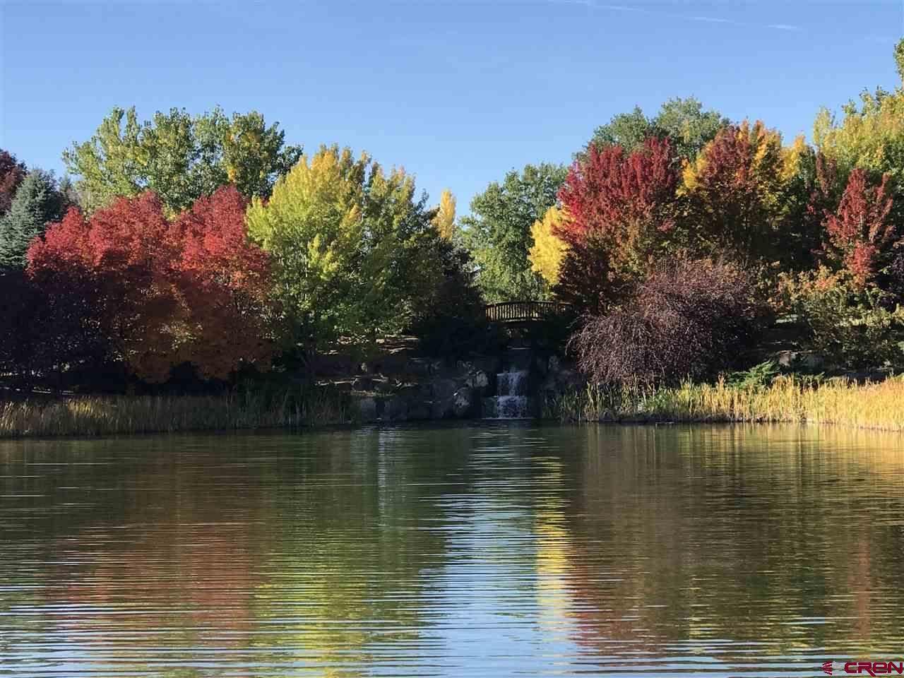 4117 Waterfall Drive, Montrose, CO 81403