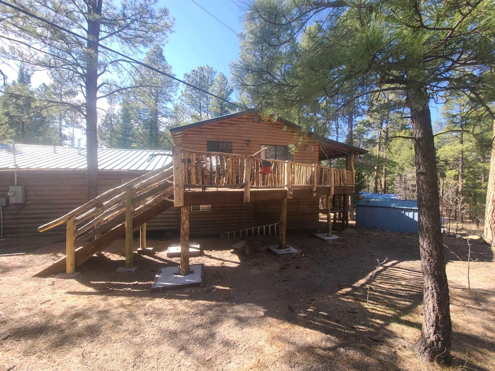 18 Country Rd, Alpine, AZ 85920