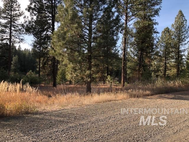 Lot 5 Timber Ridge Dr, New Meadows, ID 83654