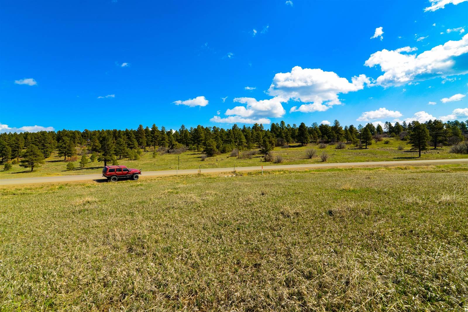 15 Paisley, Pagosa Springs, CO 81147