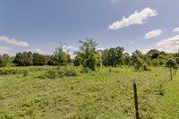 2791 Round Hill Road, Lewsiburg, TN 37091