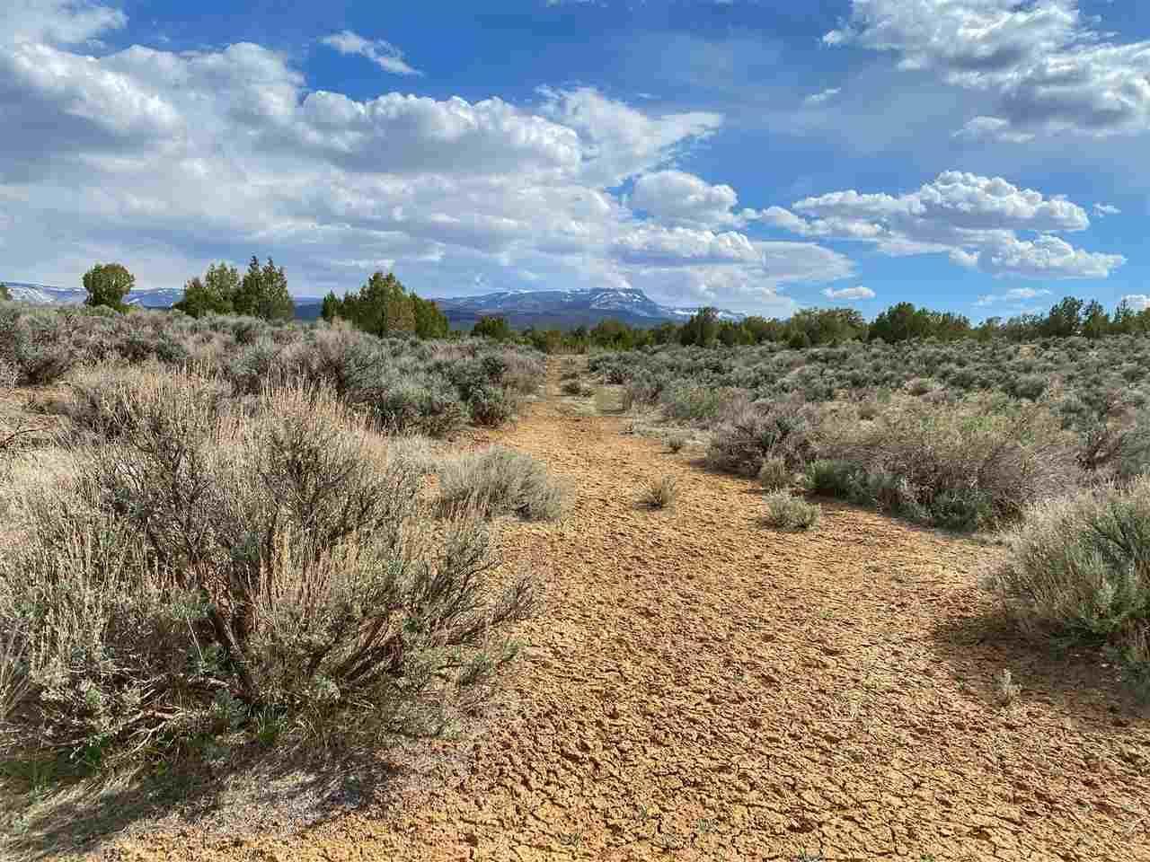4521 Horse Canyon Road, De Beque, CO 81630