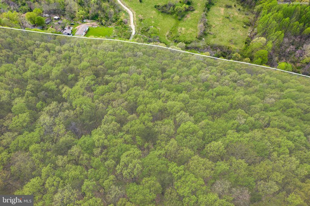 Cubbage Hollow Rd, Lot 75 - 40.55 Acres, Stanley, VA 22851