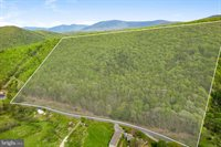 Cubbage Hollow Rd, Lot 75 - 40.55 Acres, Stanley, VA 22851