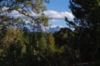 TBD (Lot 6) Big Canyon Point, Ridgway, CO 81432