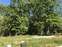 TBD South Scenic Avenue, Joplin, MO 64804