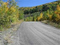 405 Powder Ridge, Mesa, CO 81643