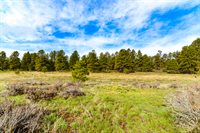 43 Marble Court, Pagosa Springs, CO 81147