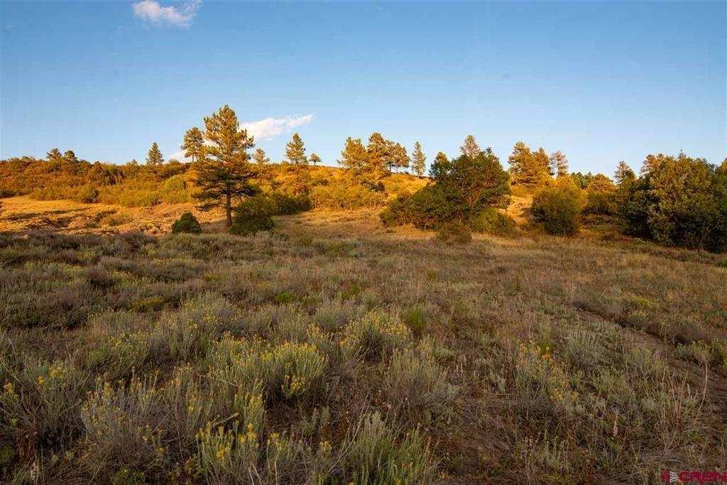 633 E McCabe, Pagosa Springs, CO 81147