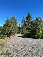 141 Big Canyon Point, Ridgway, CO 81432
