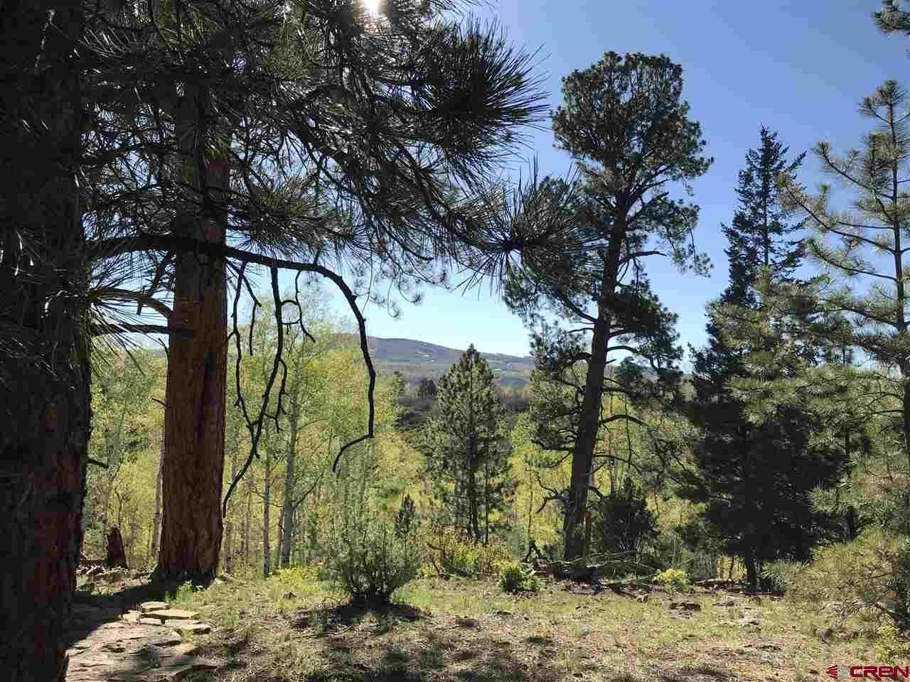 TBD S Yucca, Ridgway, CO 81432