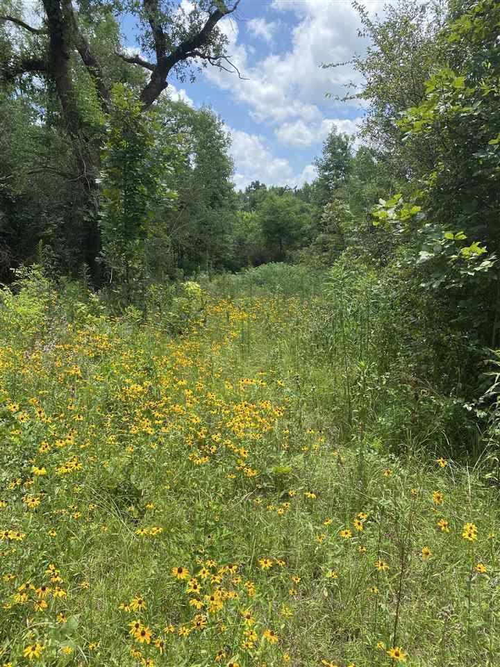 TBD County Road 2352, Marietta, TX 75566