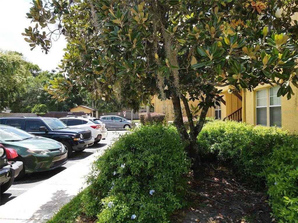 758 East Michigan Street, #203, Orlando, FL 32806