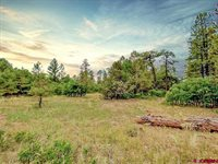 193 Allison Place, Pagosa Springs, CO 81147