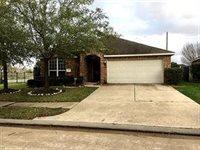 10522 Lyndon Meadows Drive, Houston, TX 77095