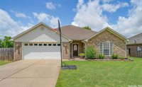 5390 Pewter, Conway, AR 72034