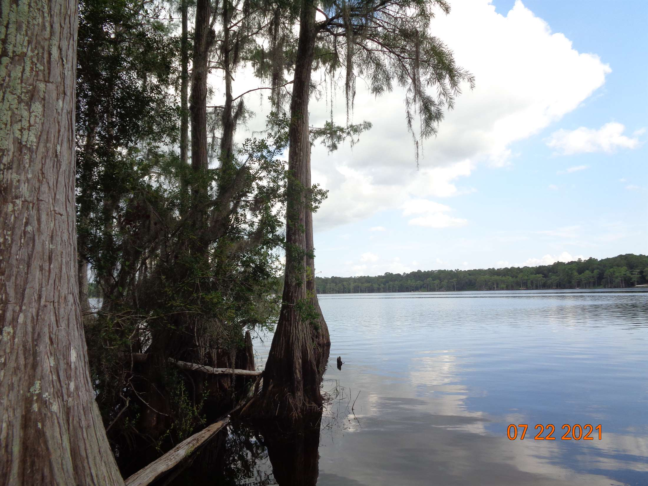 3849 Lakeview Drive, Tallahassee, FL 32310
