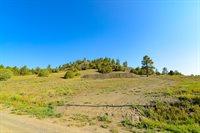 75 Dandelion Ct, Pagosa Springs, CO 81147