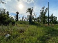 1,2,3,4, Expedition Lane, Littleton, NC 27850