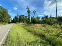 Lot 1 Roanoke Chapel Road, Littleton, NC 27850
