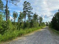 Lot 16 Expedition Lane, Littleton, NC 27850