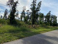 Lot 2 Roanoke Chapel Road, Littleton, NC 27850